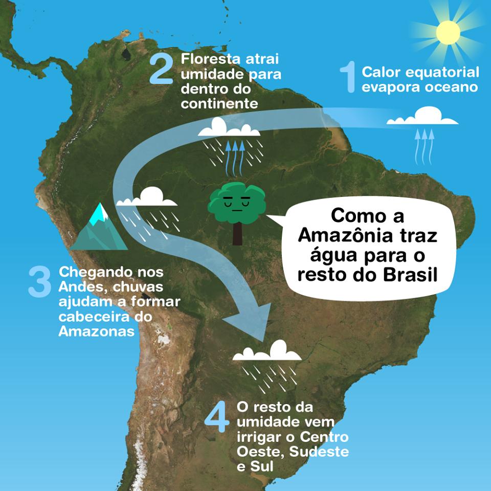Não são apenas rios continentais que beneficiam e abastecem as cidades. Na Amazônia, nascem os Rios Voadores, que são responsáveis por abastecer as demais regiões do país e por isso, preservá-la é tão importante.